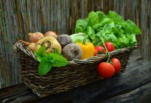 緑黄色野菜 淡色野菜